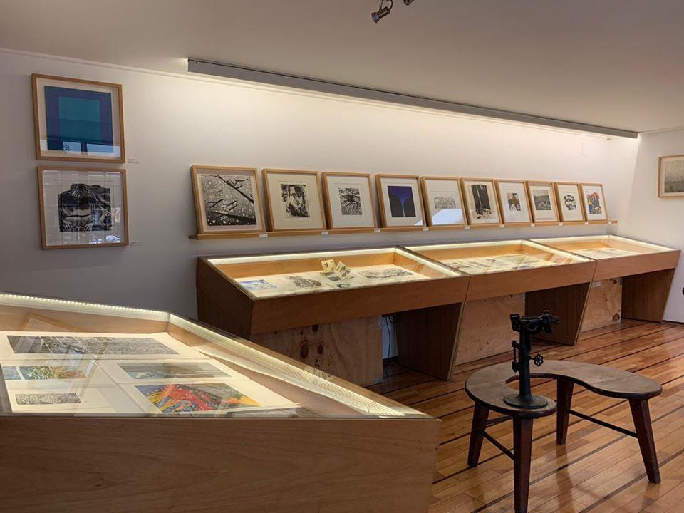 galeria 8