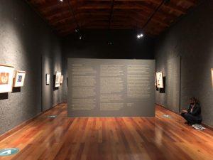 expo-lomatta22